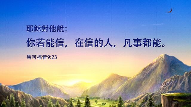 聖經金句:信心